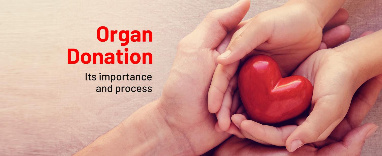 Organ Donation Day Blog